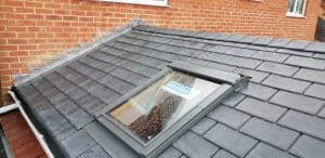 Guardian Warm Roof with Velux Skylight
